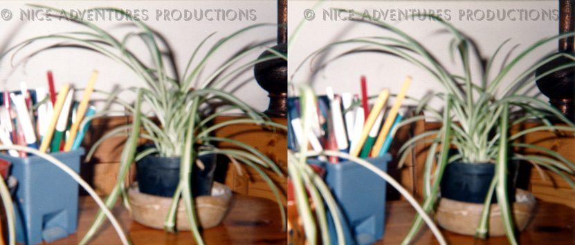 1996_c_Felt Tips and Plants 3D nap