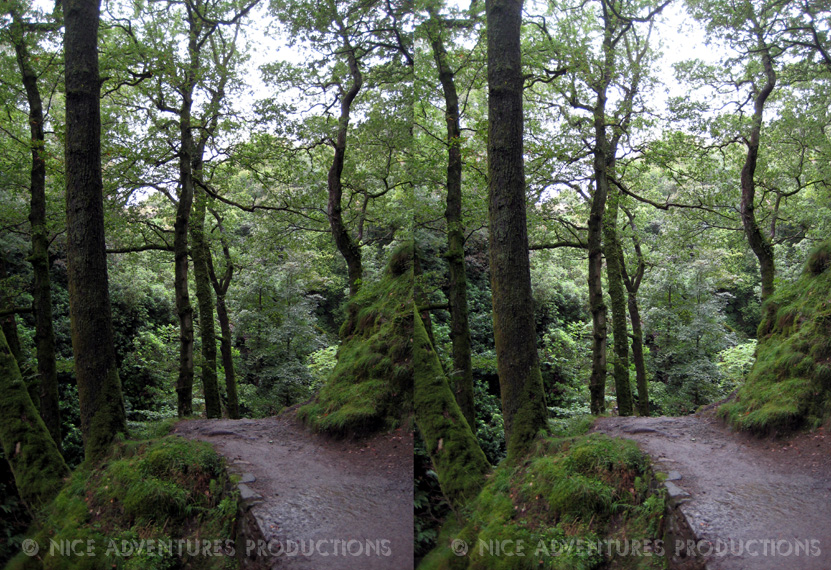 2009_Sept 02_Ullswater waterfall walk 3D 2 nap