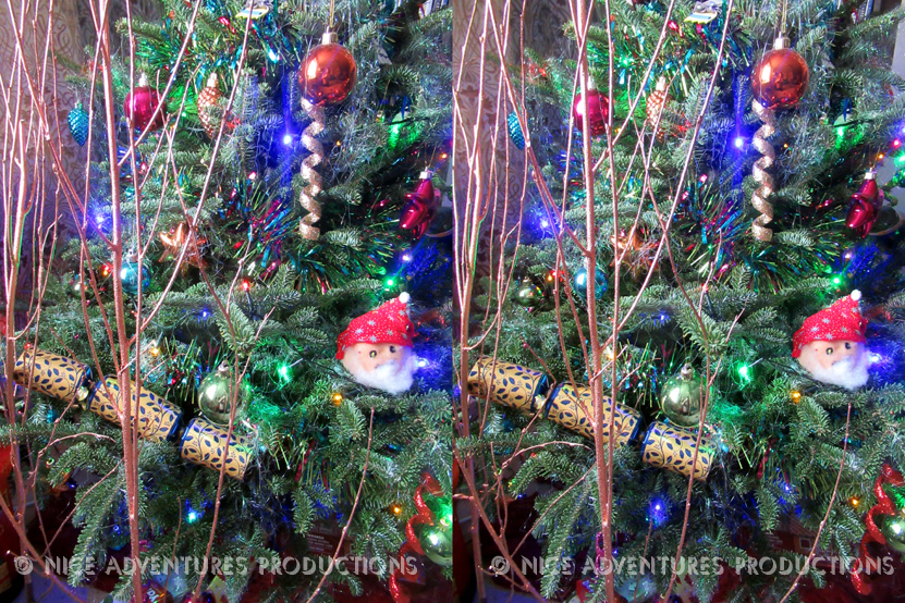 2018_Dec 25_Christmas Tree 2 3D nap
